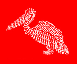 Pellicaan Logo
